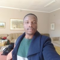Mathematical Statistics student offering Maths and Stats up to university level in joburg