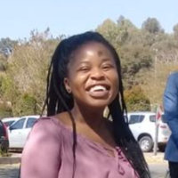 Public Administration and information management student offering English lessons up to university level in Johannesburg