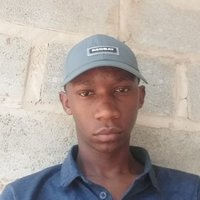 I am a student from unisa offering math tutors in english and isizulu
